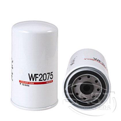 EF-42062 - تصفية الوقود WF2075